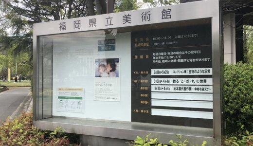 福岡県立美術館・コレクション展Ⅰ「宝物のような日常」を訪れて